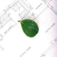 leafonplans-300x300